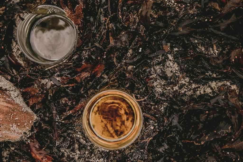 ekologisk jojobaolja