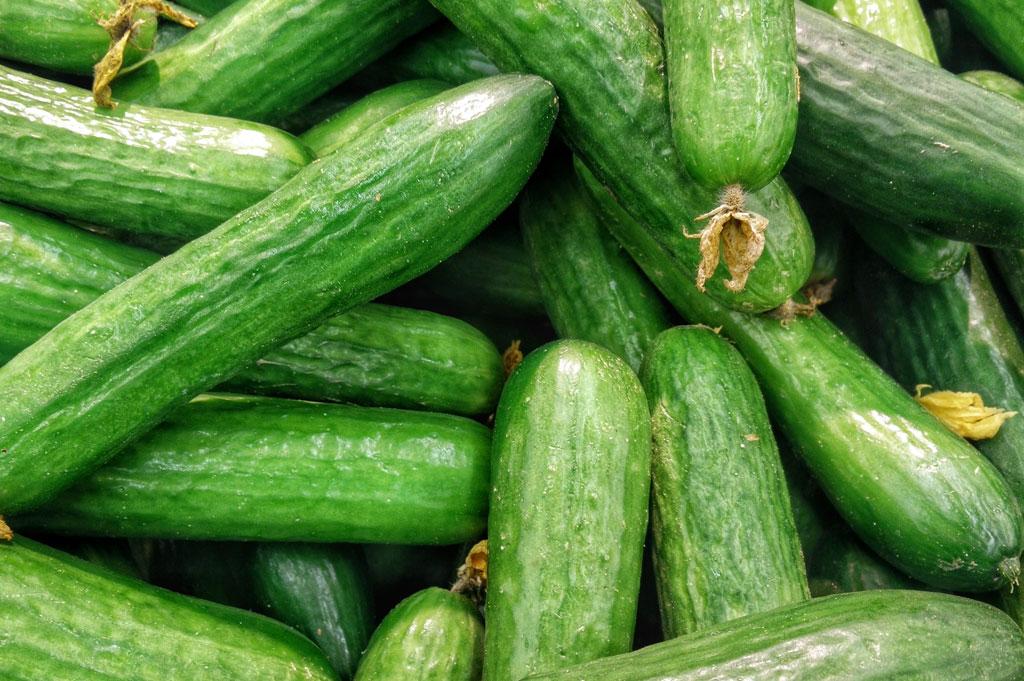 gröna gurkor