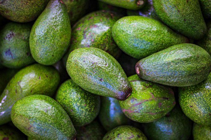 Vacker hud med Avokado