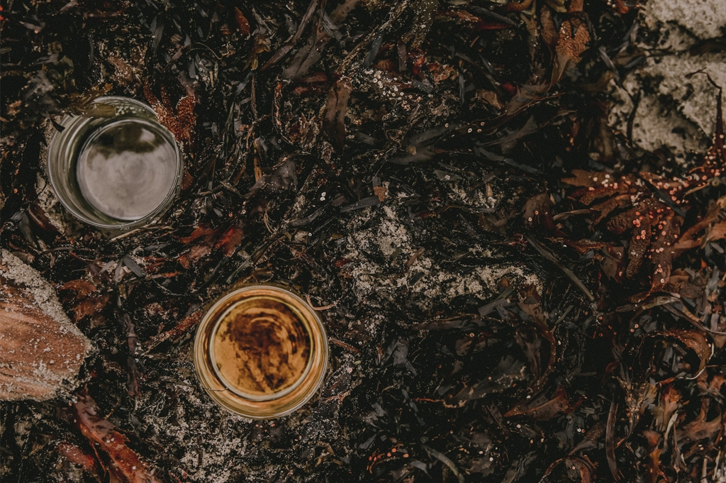ekologisk hudvård med jojobaolja